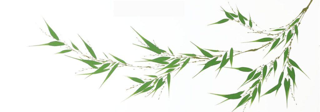 Sumi-e-painting-bamboo-BeppeMokuza-Zen-ink-art-ricepaper-leaves